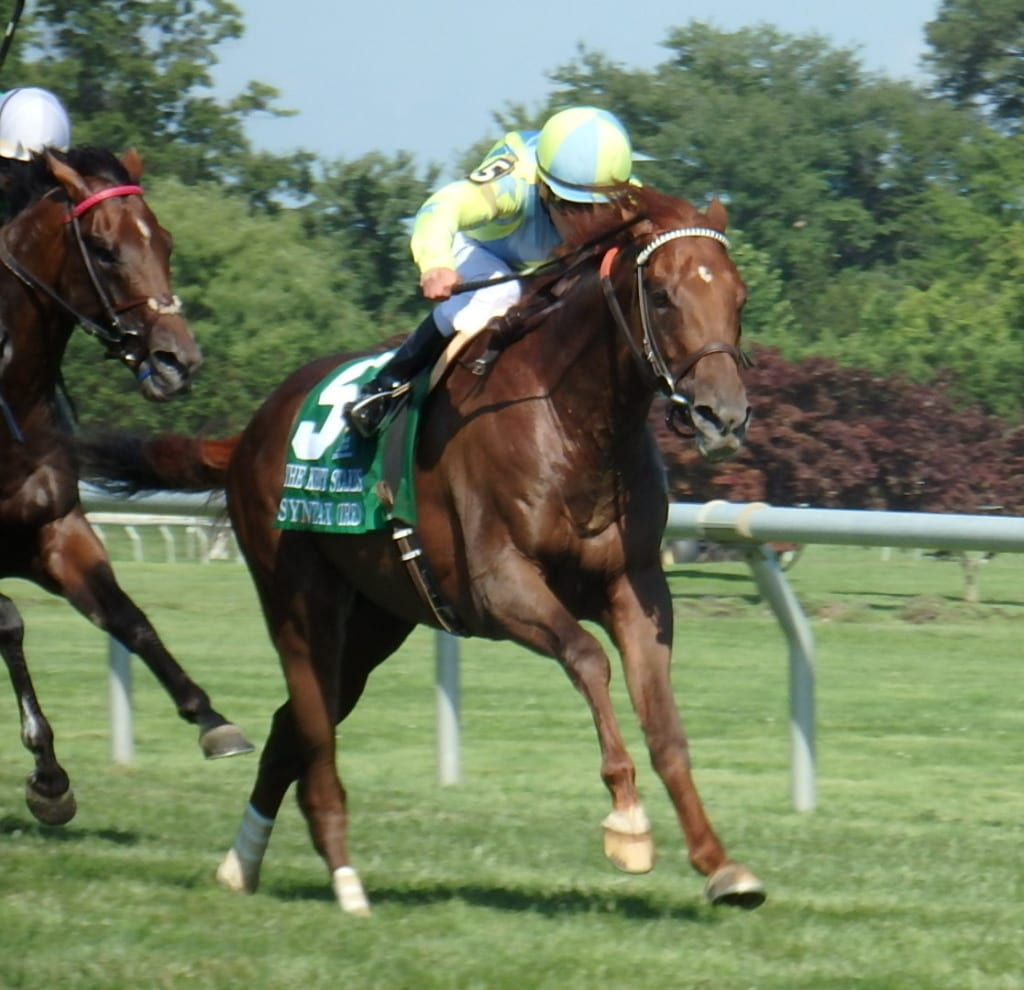 Syntax won the G3 Kent Stakes.