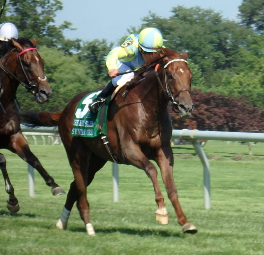 Syntax prevails in G3 Kent Stakes