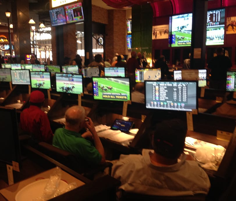 Bettors follow the action from their carrels. Photo by Gary Quill.