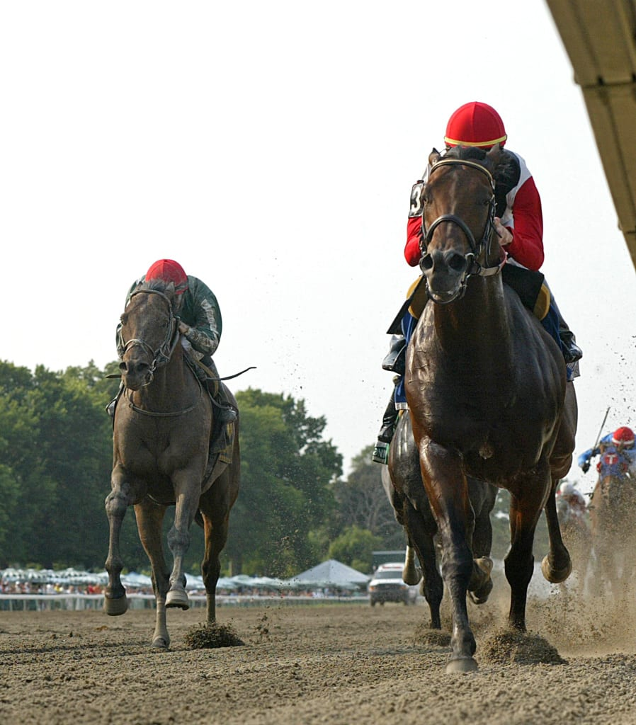 Bradester had all the answers in yesterday's Grade 3 Salvator Mile at Monmouth Park. Photo By Bill Denver/EQUI-PHOTO