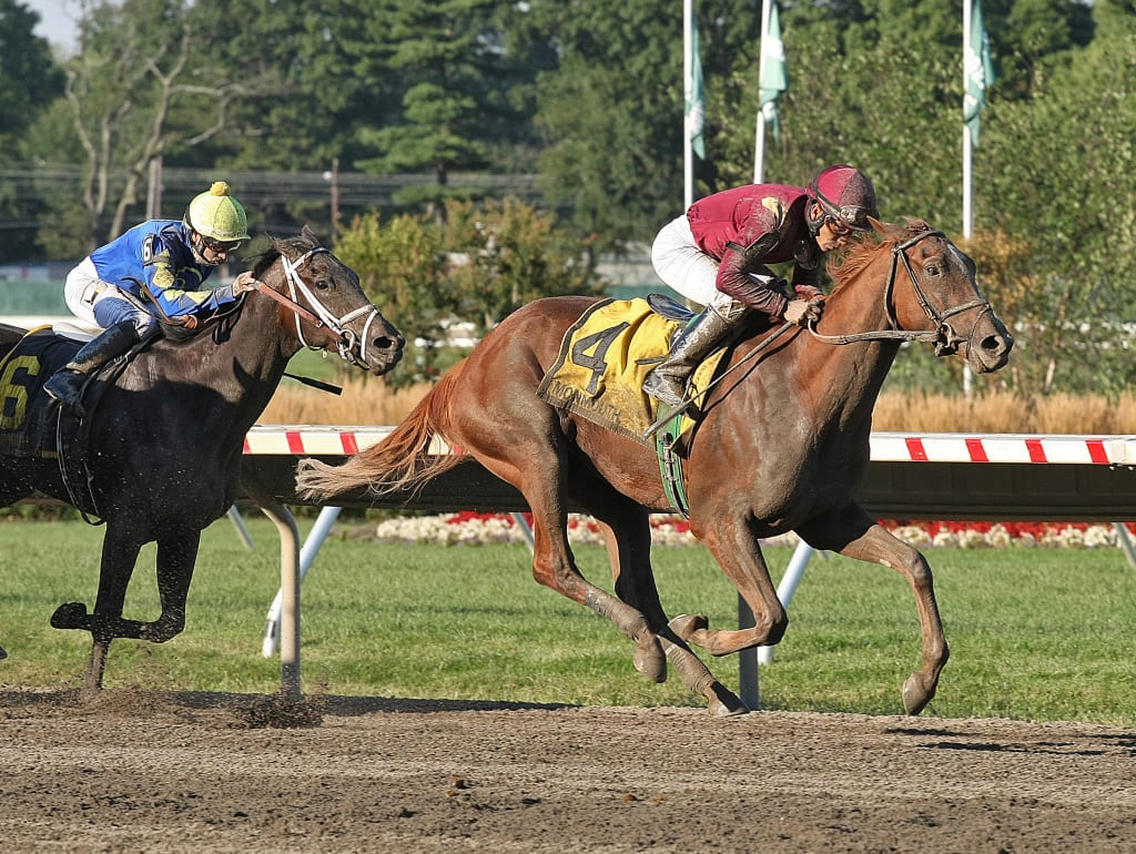 Delightful Joy took the G3 Monmouth Oaks on Saturday. Photo By Taylor Ejdys/EQUI-PHOTO