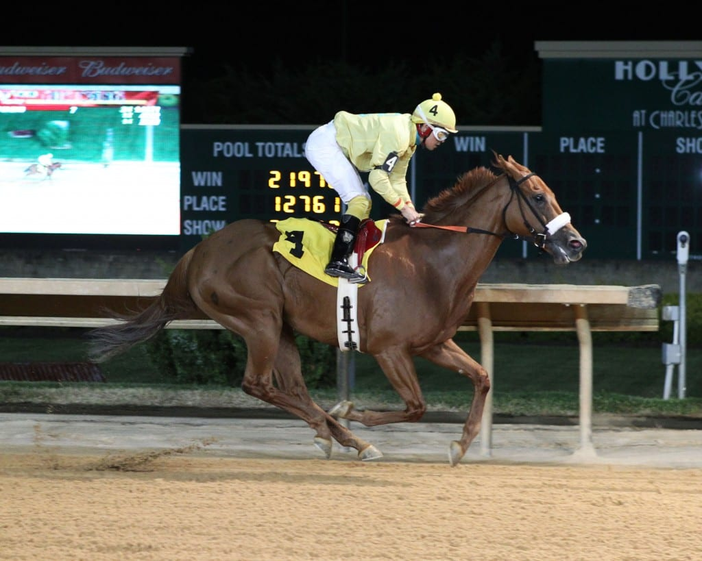 Cuppa Mocha Mojo is undefeated in five career starts. Photo by Coady Photography.
