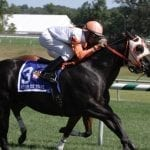 """In Focus: Wagering Laurel Park """"Class on the Grass"""" Stakes"""