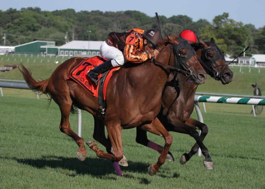 Wide-open group to contest Lady Baltimore Stakes
