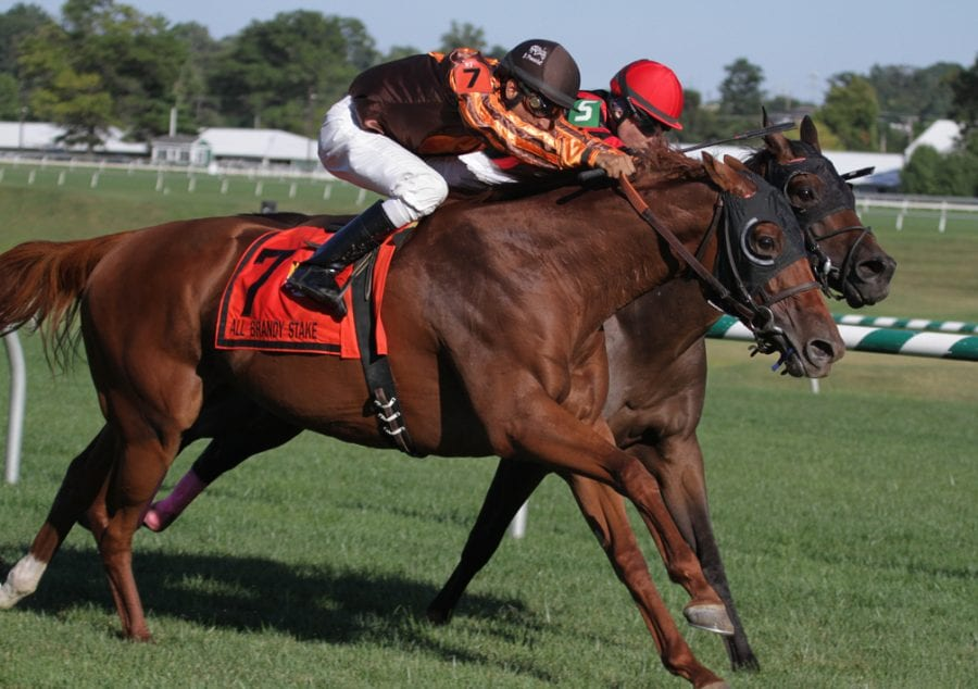 Joy edges Vielsalm in the All Brandy. Photo by Laurie Asseo.