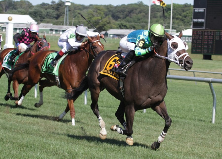 Maryland Pride Day stakes wraps