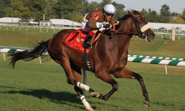 G2 Commonwealth Turf Cup: Force the Pass, odds, analysis