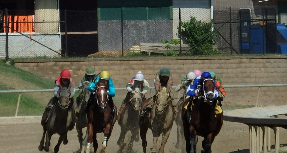 Laurel Park April 9 wagering guide released