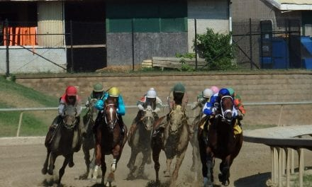 Laurel Park General George stakes wagering guide released