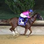 Hot City Girl, Paulassilverlining top Laurel Park stakes noms