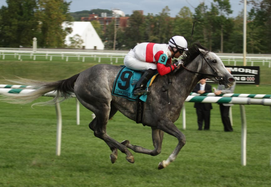 Onus was all by her lonesome in winning the G3 Commonwealth Oaks today at Laurel Park. Photo by Laurie Asseo.