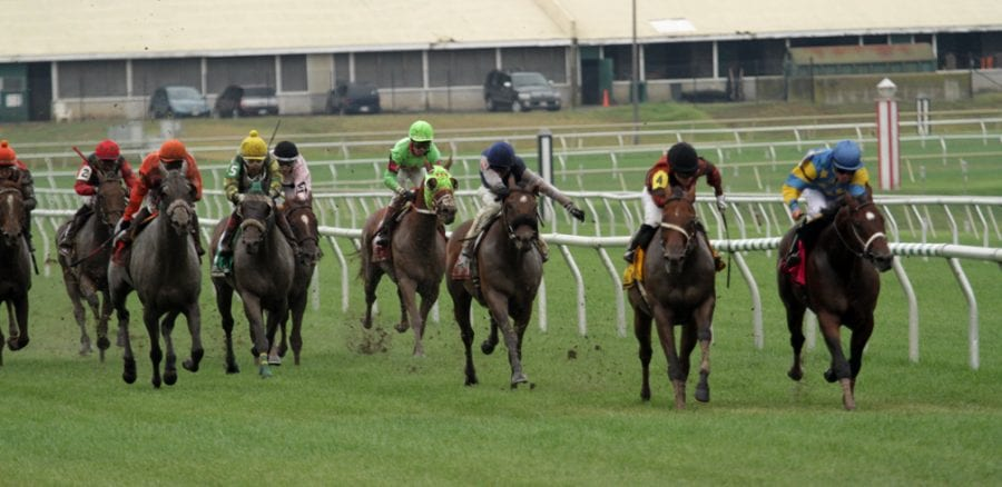 Nick's Picks for Virginia Downs day