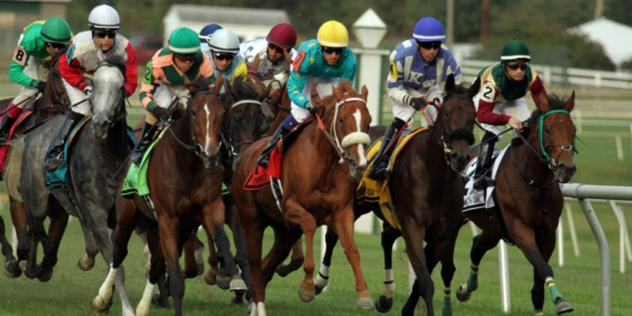 Turf's up: Laurel Park cards first grass races