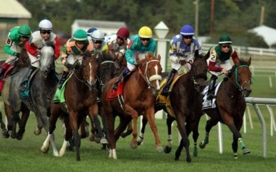 Laurel Park to offer robust summer stakes schedule