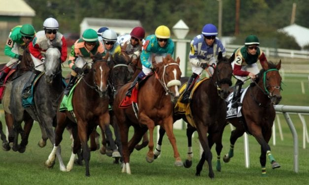 Preakness: Track docs make big decisions, bear big responsibilities