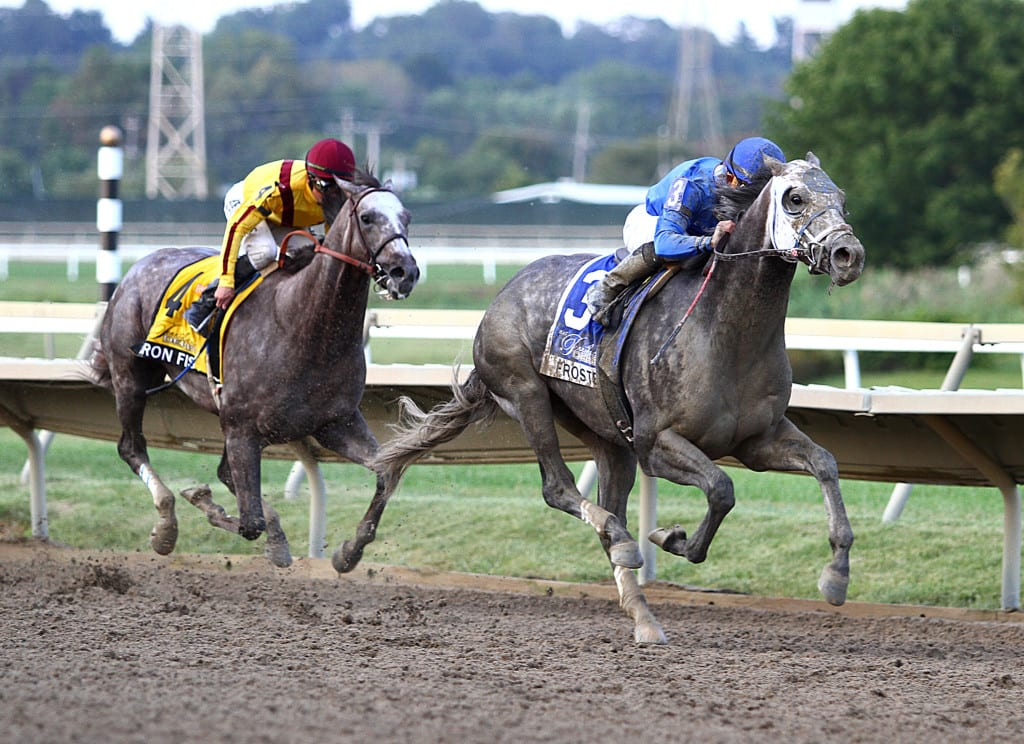 Frosted won the $1 million Pennsylvania Derby on the centerpiece day of the track's Fall Festival. Photo By Taylor Ejdys/EQUI-PHOTO