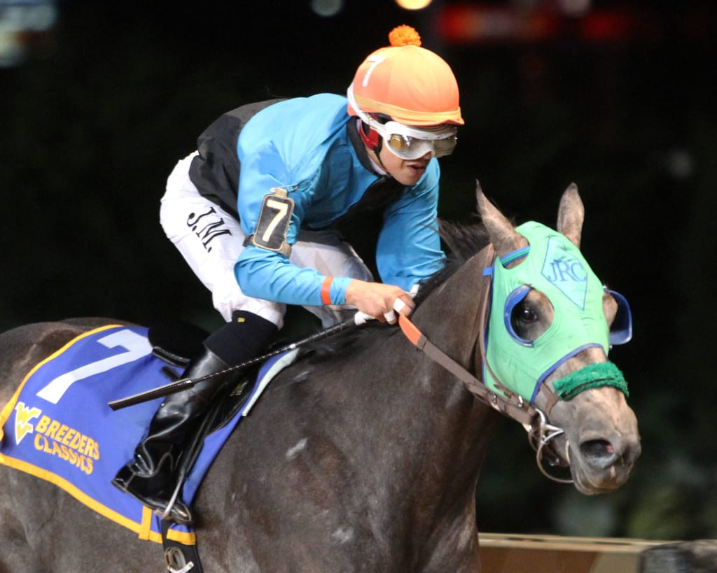 Bullets Fever was all by himself in winning the Moscarelli. Photo by Coady Photography.
