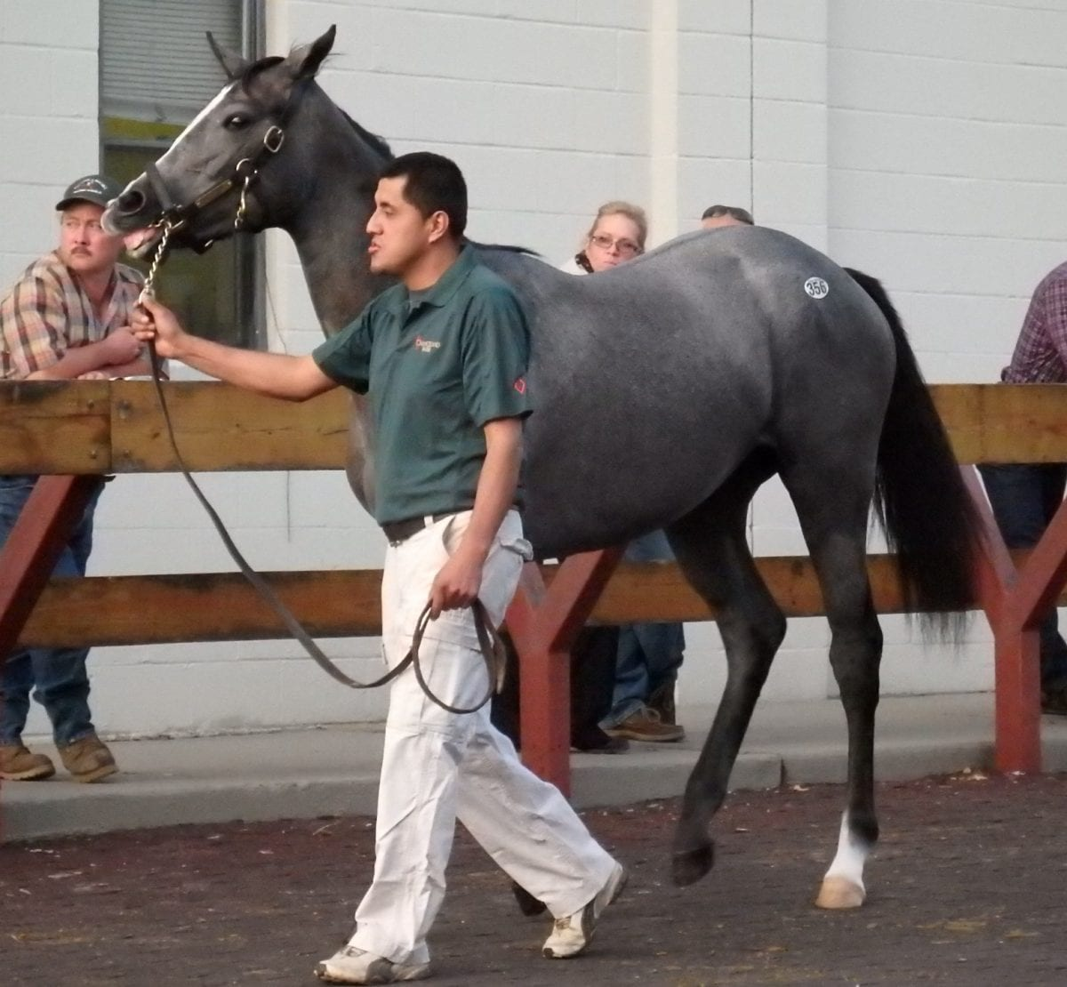 Fasig-Tipton yearling sale shows declines