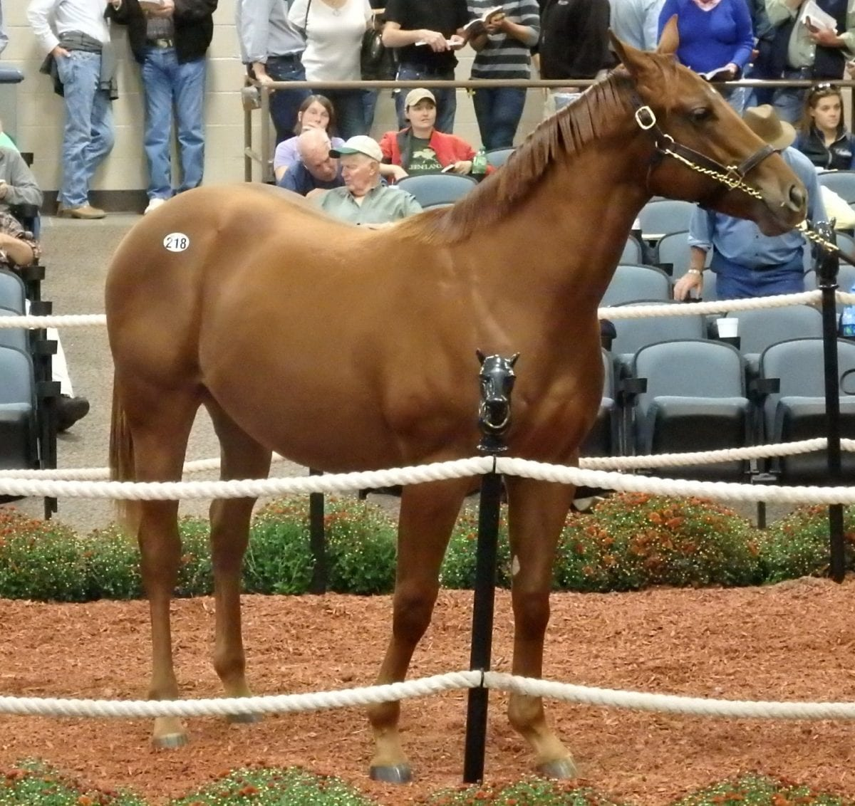 Fasig-Tipton sale: Will the buyers show?