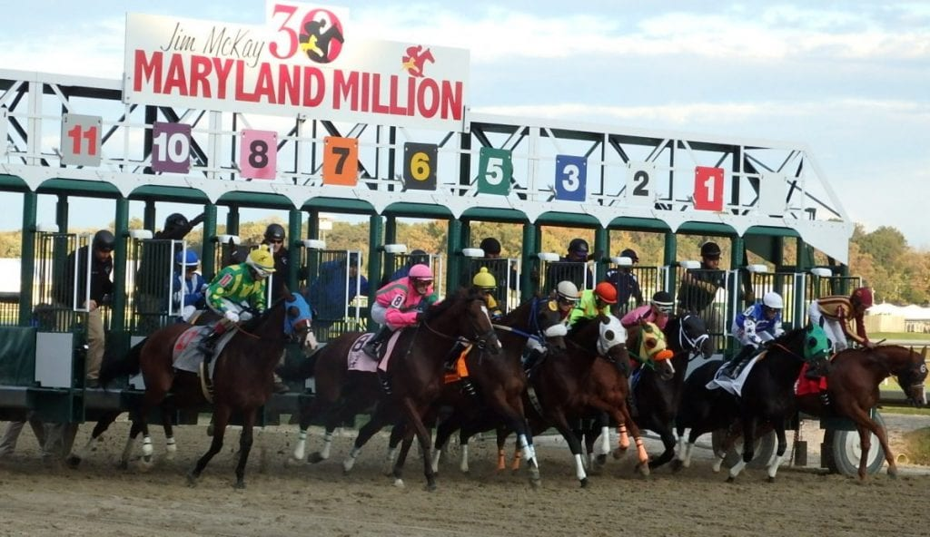 Tim Capps oversaw Maryland Million during his time at the MHBA. Photo by The Racing Biz.