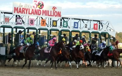 Maryland to increase state-sired maiden bonus