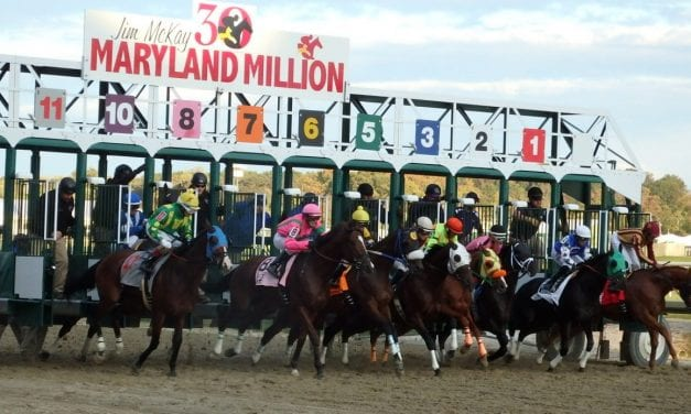 Picks are live for FREE Saturday Maryland Million handicapping contest