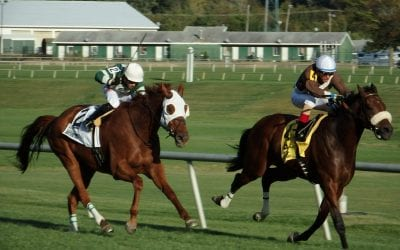 Over 100 nominated to Pimlico closing weekend stakes