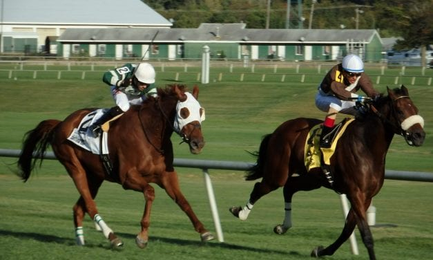 Picks are live for Saturday's FREE Handicapping contest