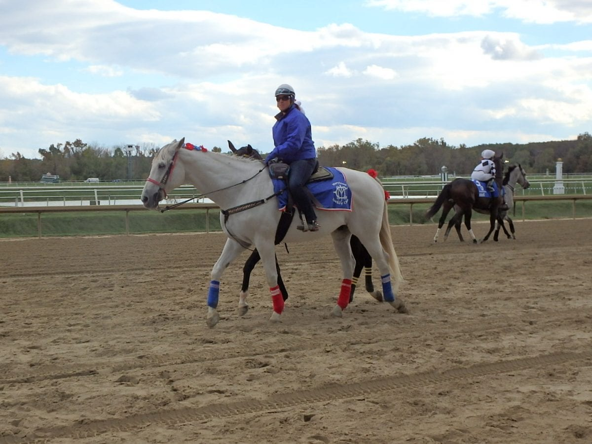 Laurel Park: Thanksgiving means carryovers and pies