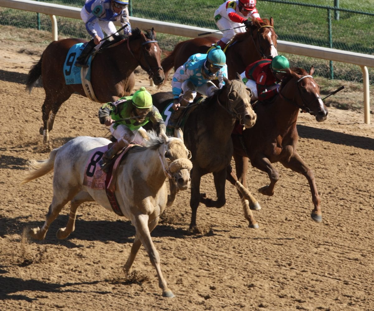 "Trainer Butch Reid: Time for a ""racing czar"""