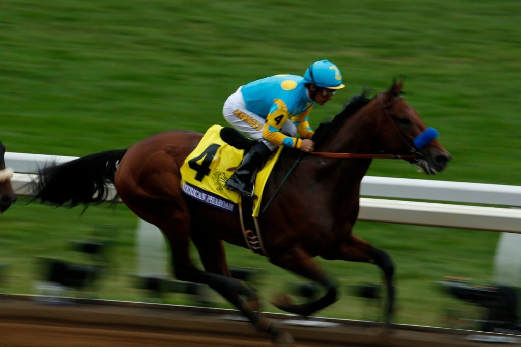 Lexington, KY - Keeneland - American Pharoah with Victor Espinoza aboard wins the $5 Million Breeders' Cup Classic for trainer Bob Baffert and owner Zayat Stables here today, Saturday October 31, 2015 during the Breeders' Cup World Thoroughbred Championships. Photo by © Breeders' Cup/Todd Buchanan 2015