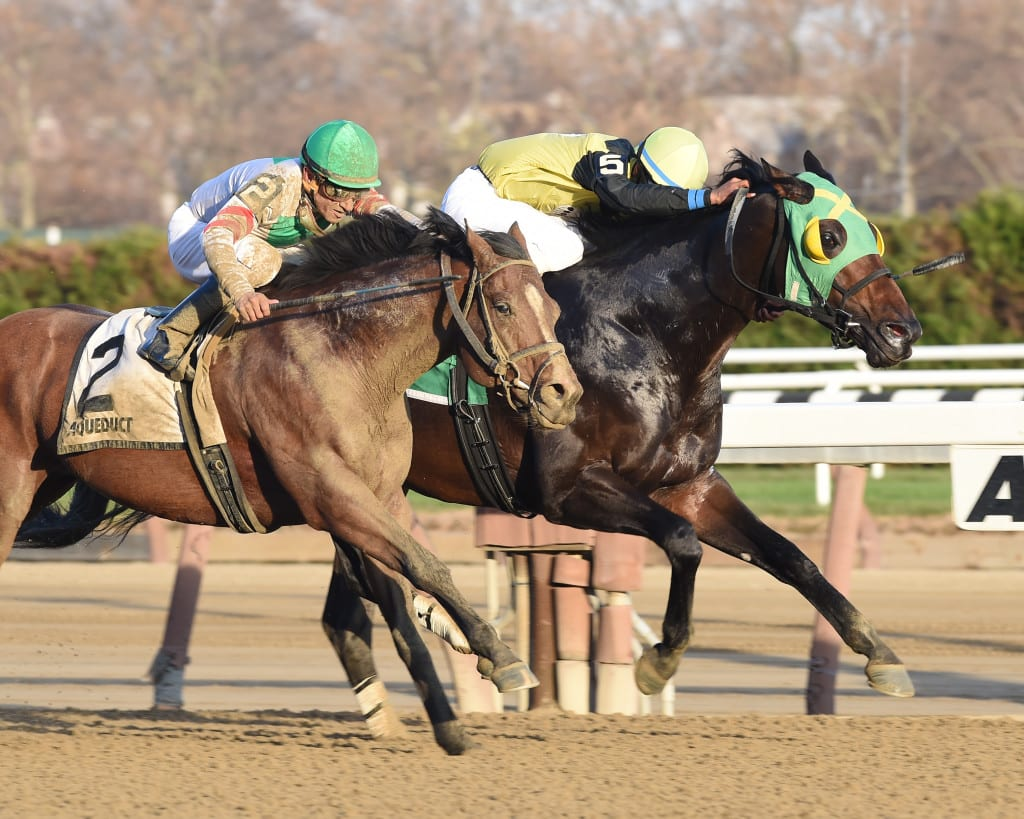 Green Gratto (inside) held on to win the G3 Fall Highweight on Thanksgiving Day. Photo by NYRA.