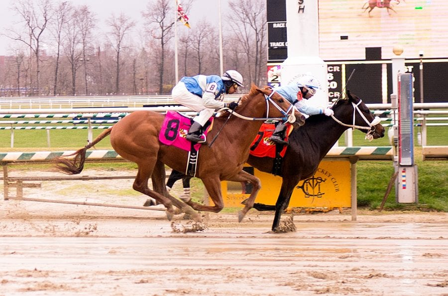 O! Showalter wins Laurel Park debut