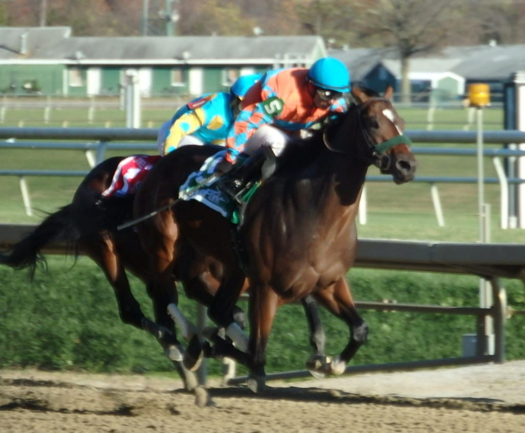 Awesome Speed prevailed in a hard-fought running of the James F. Lewis, for two-year-olds. Photo by The Racing Biz.