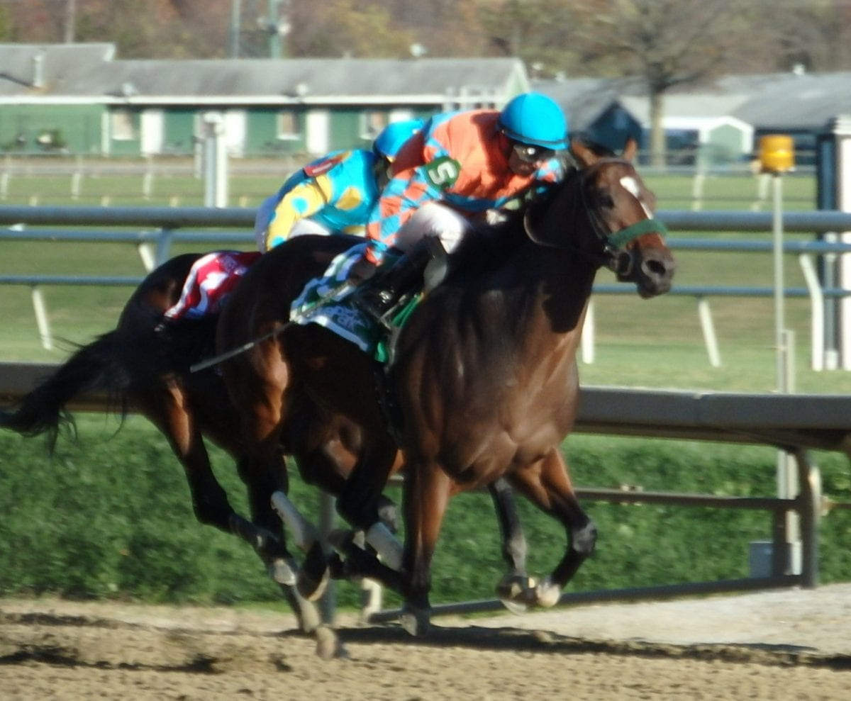 Awesome Speed, Lost Raven notch 2yo stakes scores