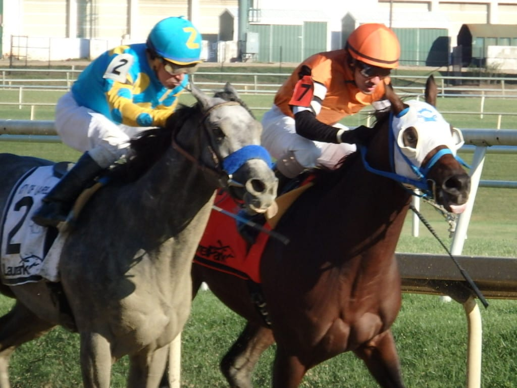 El Kabeir (#2) had the longest nose and won the City of Laurel Stakes in a three-horse photo over Roxbury N Overton (inside) and Duff (not pictured). Photo by The Racing Biz.