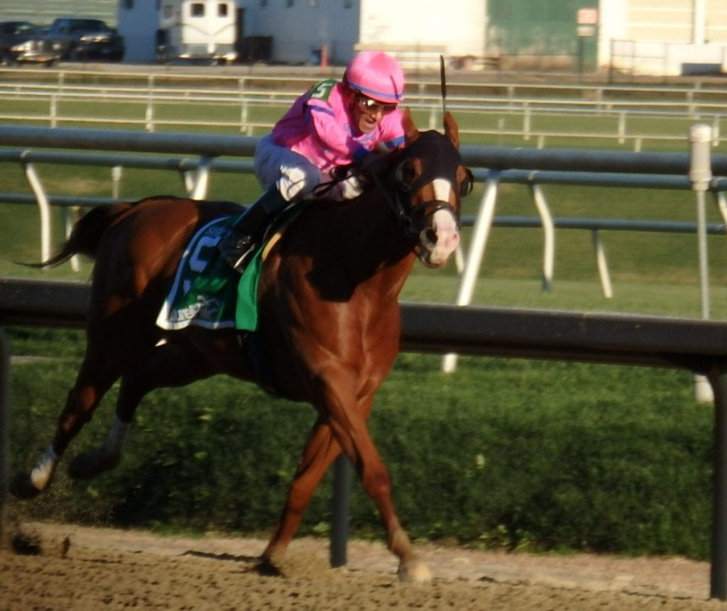 Hot City Girl devastated her rivals in today's Safely Kept at Laurel Park. Photo by The Racing Biz.