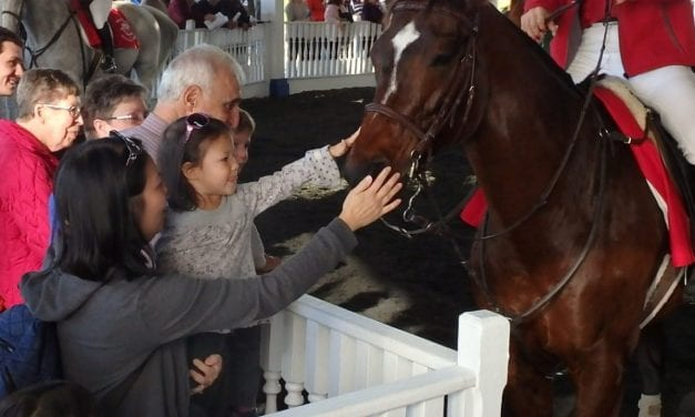 RMTC, NTRA promote test barn recommendations