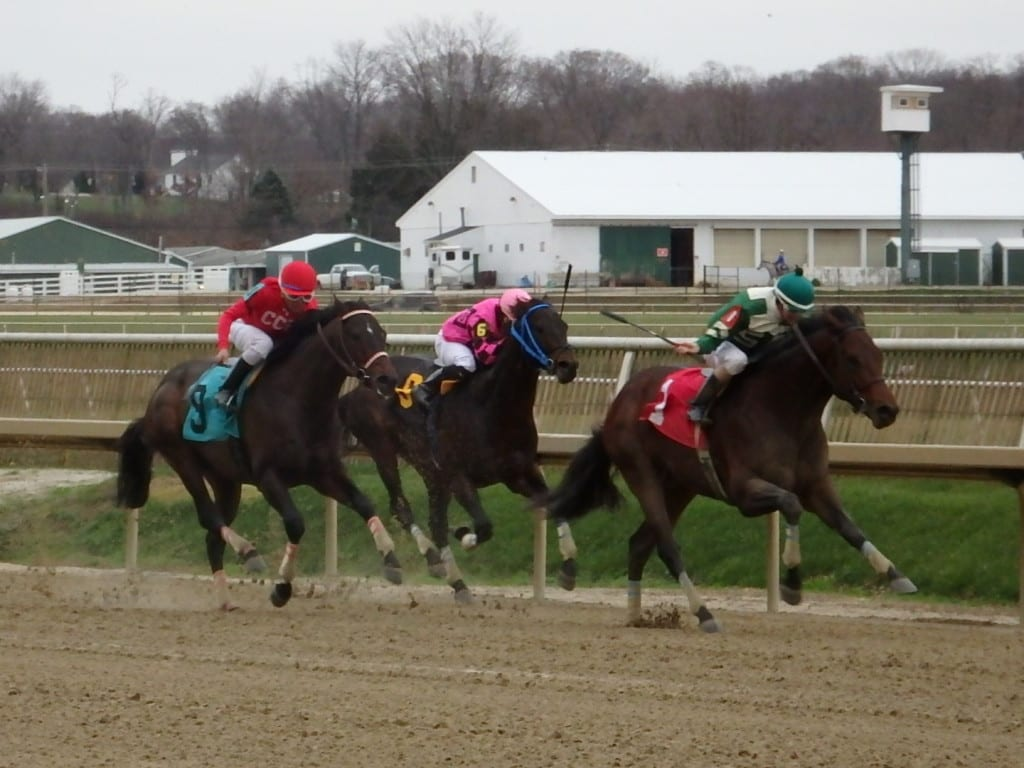 Always Sunshine (#1) enjoyed a perfect trip en route to winning the Dave's Friend. Photo by The Racing Biz.