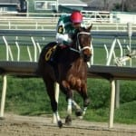 Maryland Handicapping Series April 2016 leaderboard