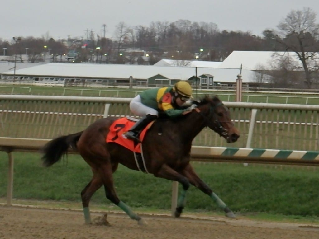 Look Who's Talking proved best in the Maryland Juvenile Championship. Photo by The Racing Biz.