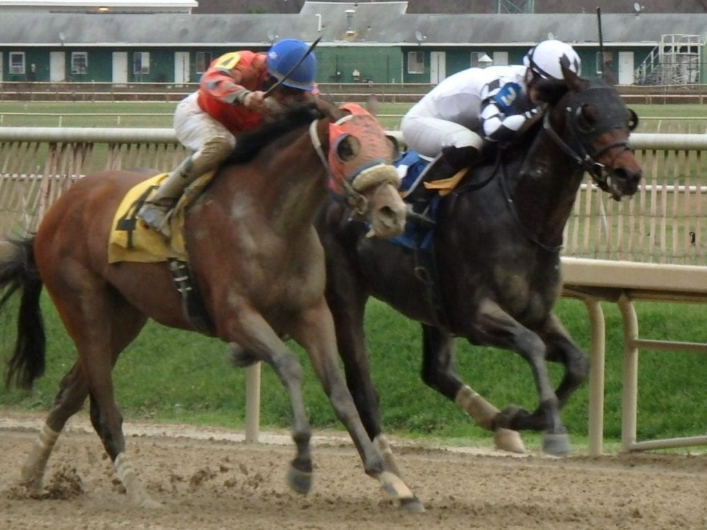 Ravenheart (inside) held off Flash McCaul to win the Maryland Juvenile Futurity. Photo by The Racing Biz.