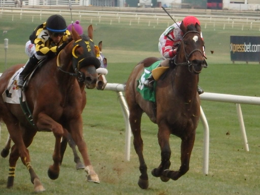 Skeleton Crew (right) finished fifth in his final start. Photo by The Racing Biz.