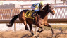 Tactics change gives Candida H. first stakes win