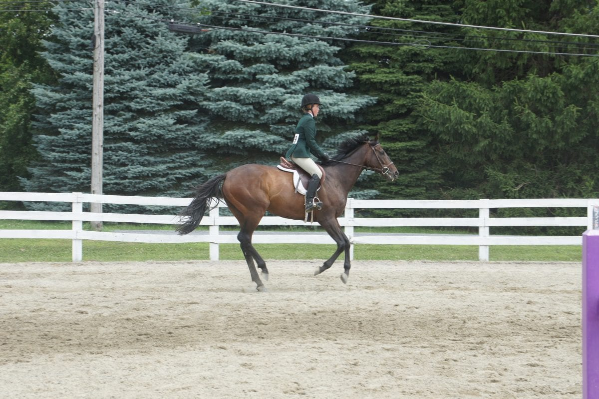 Candy Feat, who cheated death, succumbs to laminitis