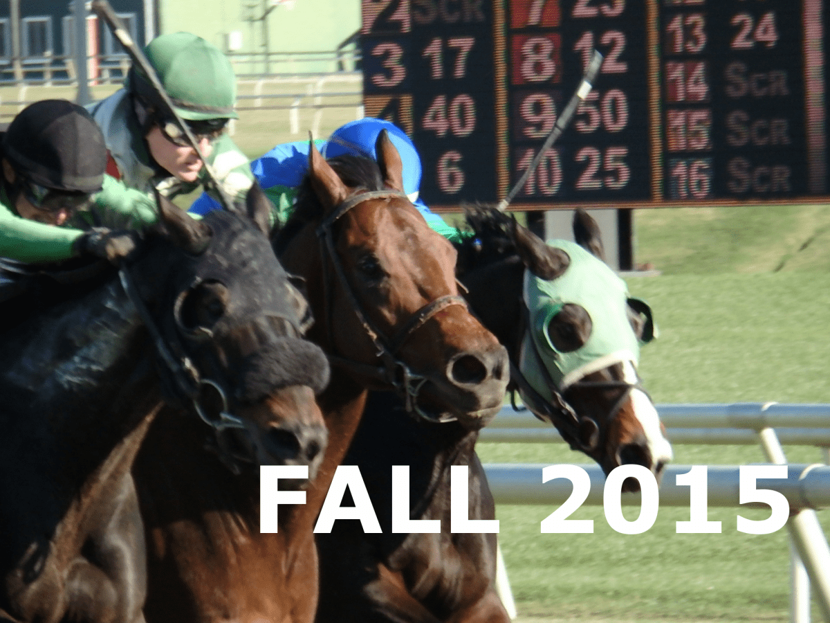 Year in pictures: Fall 2015