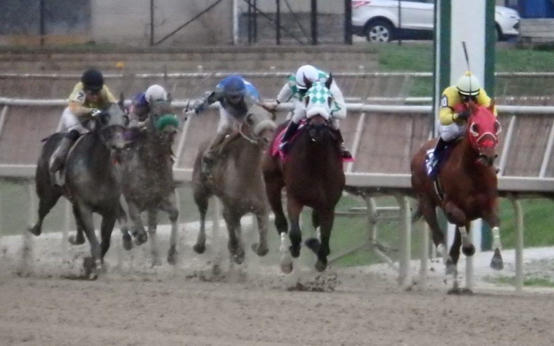 Which races are in Friday's Stronach 5?