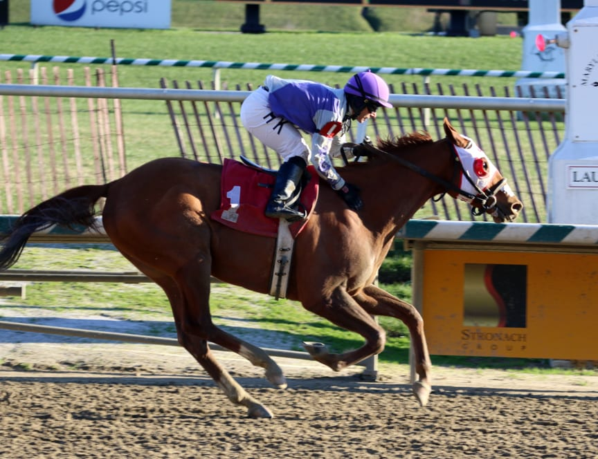 Page McKenney romped home in the Native Dancer to become a millionaire. Photo by Laurie Asseo.