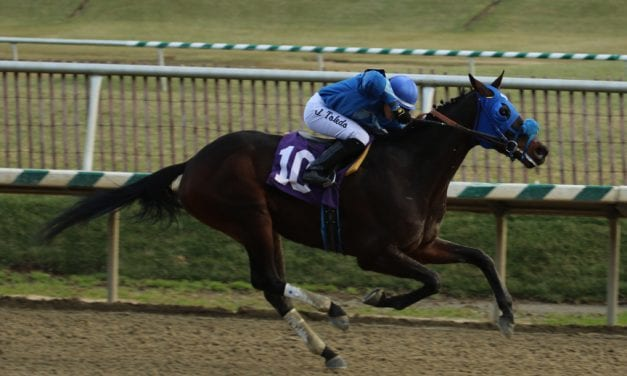 First Laurel Park stakes of '17 draw 51 noms