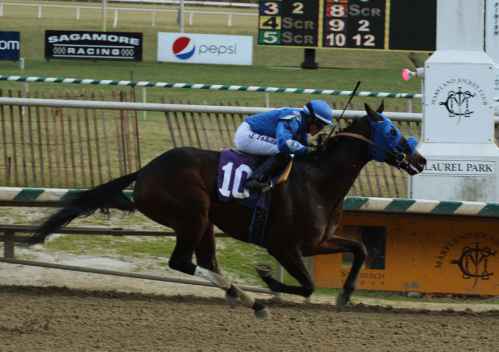 Sonny Inspired won the Fire Plug and will take a swing at the G3 General George. Photo by Laurie Asseo.